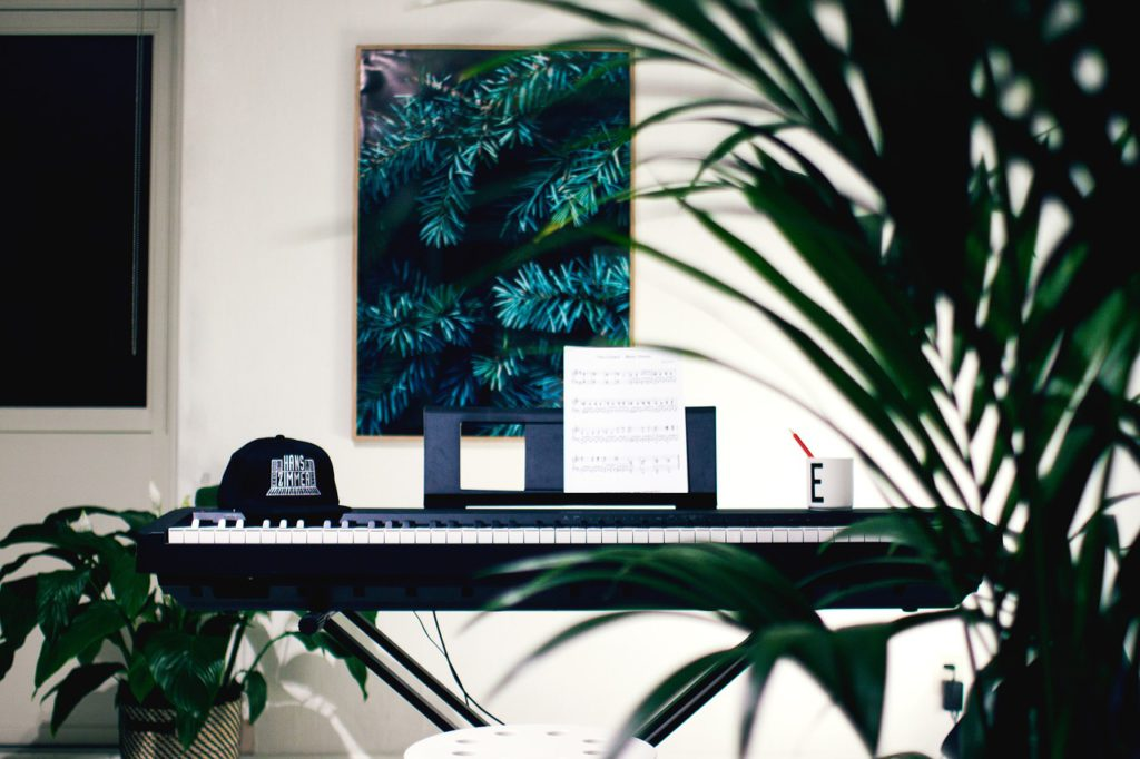 urban jungle - organ 2565569 1280 1024x682 - Urban Jungle: la nuova tendenza dell'home decor